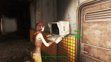 Every Companion can hack terminals and pick locks