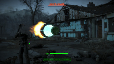 Nuka Projectiles