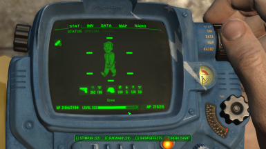 Pipboy Color Swap