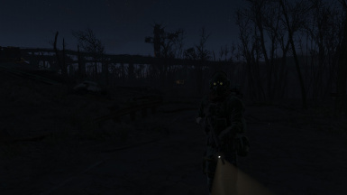 Deadly looking at night