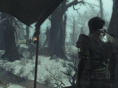 FROST Survival Simulator at Fallout 4 Nexus - Mods and community