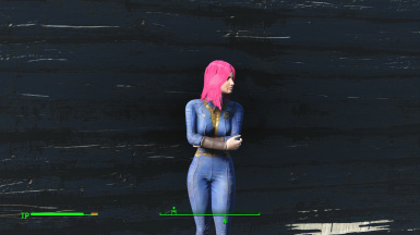 Panser in the Vault Suit from Vault 146 01