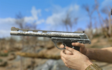 Engraved Automag