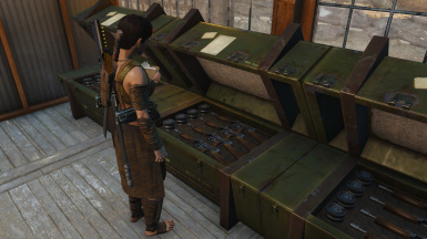 Weapons Shipment