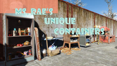rae s unique containers