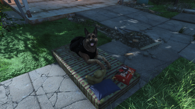 Dogmeat's bed by RedRocketTV