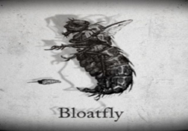Bloatfly's are not deities