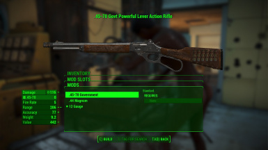 Upgraded Lever Action