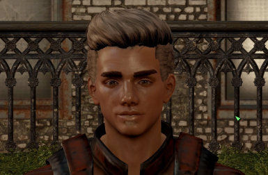 My LooksMenu Male Presets at Fallout 4 Nexus - Mods and