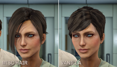 Wasteland Beauty LooksMenu Preset