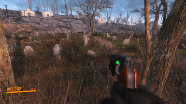 With PRC ENB (and Generic Compact HUD)