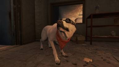 Disable Dogmeat Whining