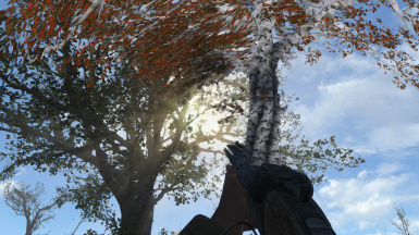 The Beautifier at Fallout 4 Nexus - Mods and community