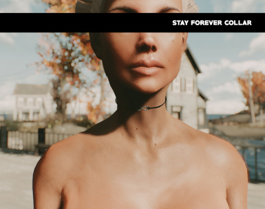 Stay Forever Collar