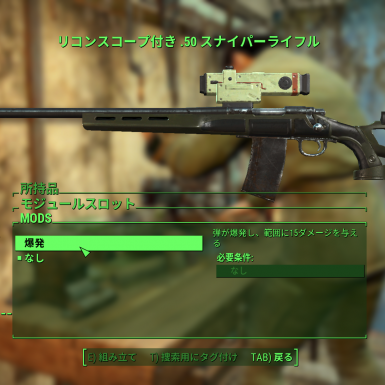 SS Weapon