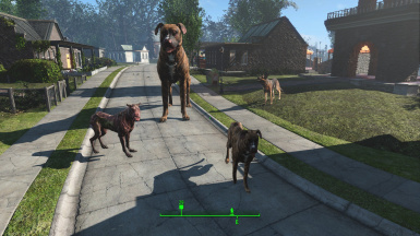 Driveables of the Commonwealth - Dogs