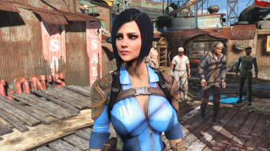 Persona's Vault Meat Preset at Fallout 4 Nexus - Mods and