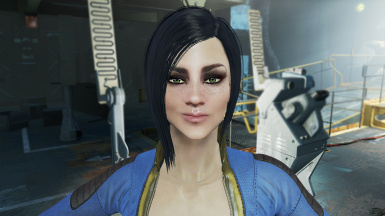 Persona's Vault Meat Preset at Fallout 4 Nexus - Mods and community