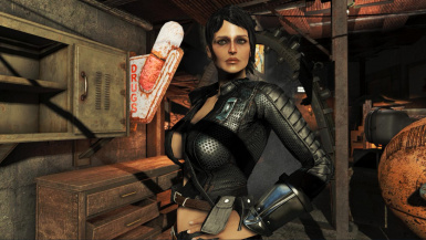 Captivating Companions at Fallout 4 Nexus - Mods and community