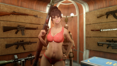 Guns and Boobs - buy your RPG at the nearest store