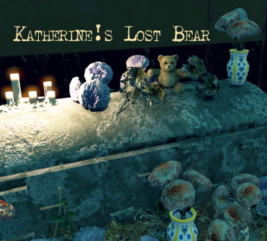 Katherine's Lost Bear