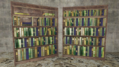 Filled Tall Bookcases - Replacers