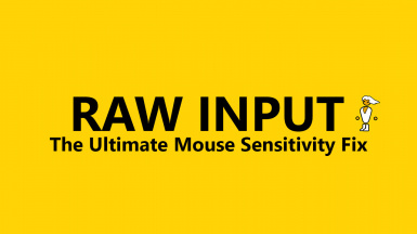 RAW INPUT - The Ultimate Mouse Sensitivity Fix