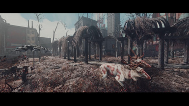 Bitter Cold Commonwealth - With ENB Depth of Field at