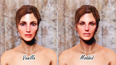 Wasteland Heroines Replacer - Heather Casdin -