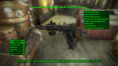 Example of translate in pip-boy menu the description of firearms 2