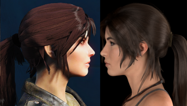 Lara Croft 2013 Comparison II