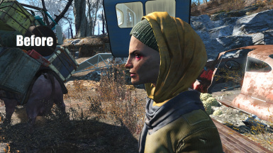 how to find cricket fallout 4
