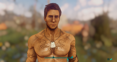 Dirt effects on male characters