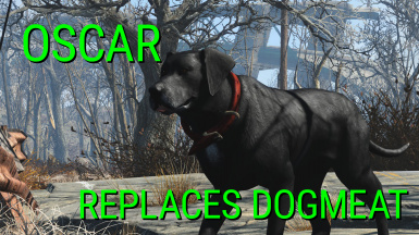 Oscar - Dogmeat Replacement