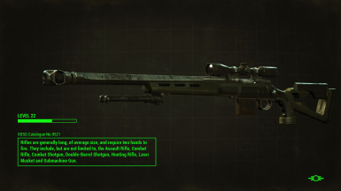 Hunting Rifle with Bipod