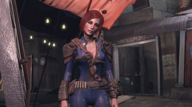 Eleanor Preset for Looksmenu at Fallout 4 Nexus - Mods and