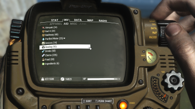 Pip-Boy interface with fixed subtle colored icons. (1.4)