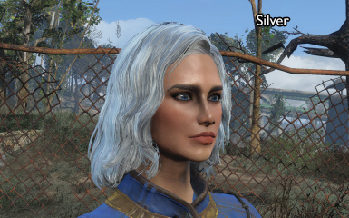 silver front