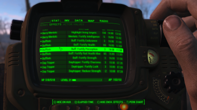 Pip-Boy: Active Effects Tab