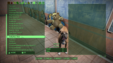 oh, dogmeat wanted your teddy bear