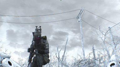 Scouting the wastes