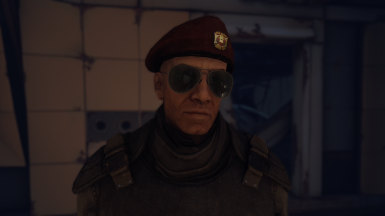 Domt25's New Vegas Presets (among other male presets)