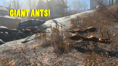Giant Ants of the Commonwealth