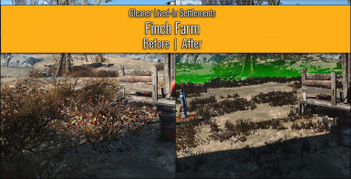 Finch Farm - Before / After