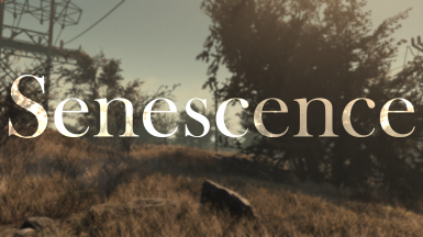 Senescence - An ENB Preset for Polluted Climate