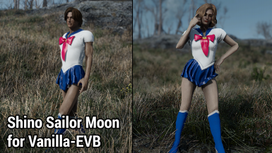 Shino Sailor Moon for Vanilla-EVB