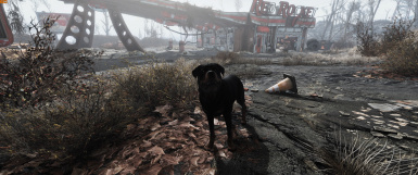 5 Minute Simple Step by Step guide to Convert your Creation Club Dog into a Dogmeat Replacer (No esp's or esl's needed)
