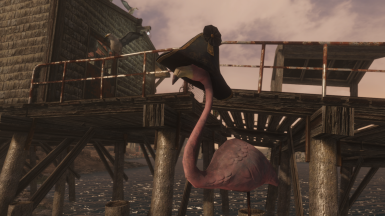 Horatio Flamingo