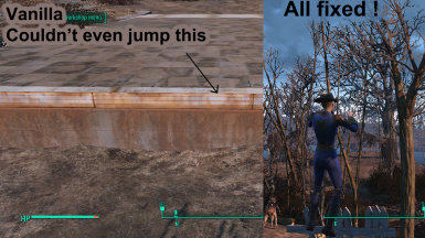 jumpfence2