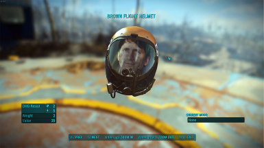 Commemorative Todd Howard Edition Flight Helmet